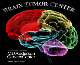 Brain Tumor Center Distinguished Lecture Series presents Bozena Kaminska, Ph.D.