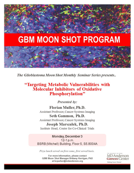 GBM Moon Shot Seminar Series: