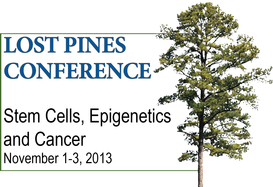 Lost Pines Conference: Stem Cells, Epigenetics and Cancer