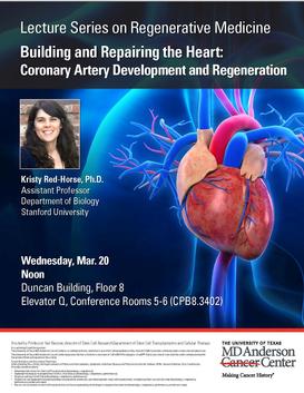 Lecture Series on Regenerative Medicine-